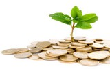 LE MONEY MANAGEMENT – PLAN DE TRADING